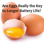 Really Eggs May Help Batteries Last Longer