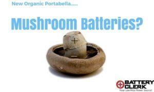 mushroom batteries
